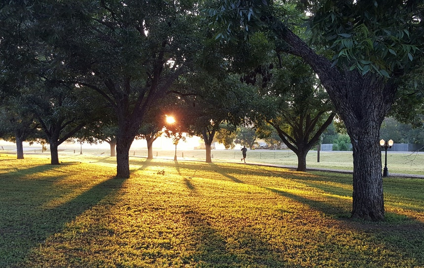 Park at sunrise.