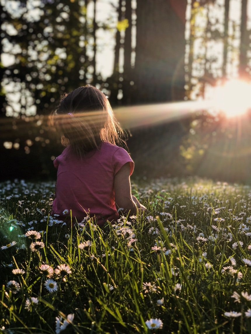 Little girl in a meadow