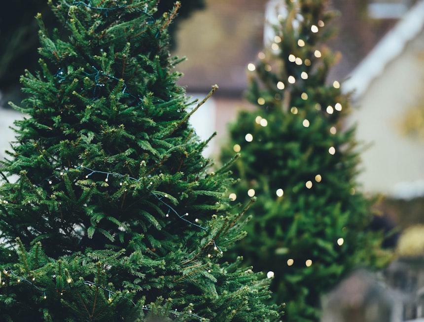 Christmas Decoration Storage Hacks Everyone Should Know